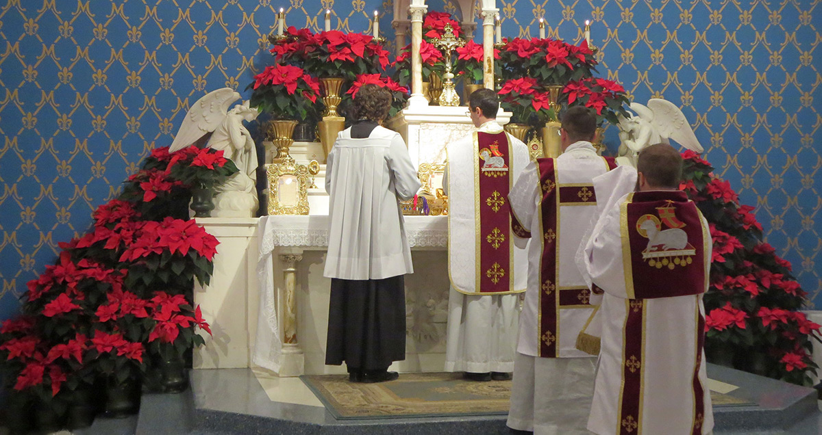 Christmas at Mater Dei